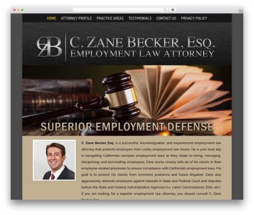 Free WordPress Strong Testimonials plugin - czanebecker.com