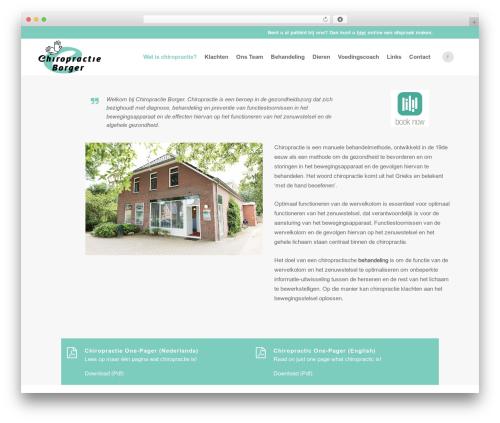 Bridge WordPress template - chiropractieborger.nl
