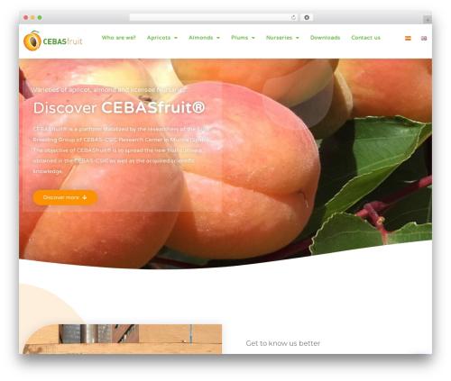 Organic Food food WordPress theme - cebasfruit.com