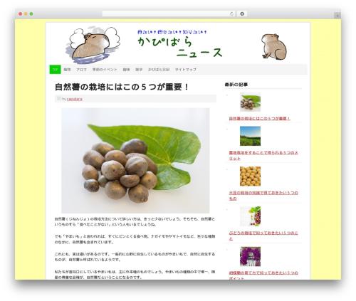 Prose WordPress theme - capybara-news.com