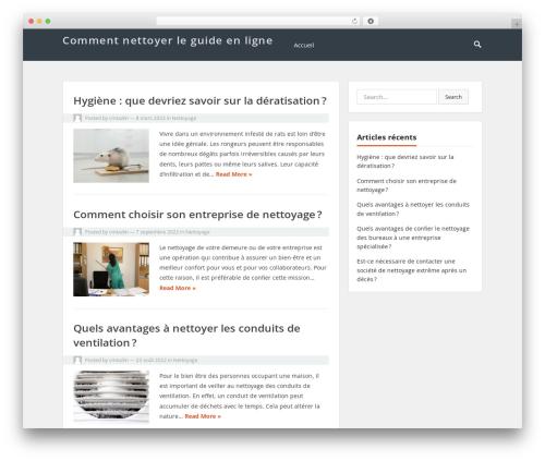 VT Blogging WordPress blog template - comment-nettoyer.fr