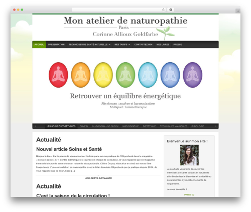 WordPress theme Organic Natural Theme - corinnegoldfarbe.fr