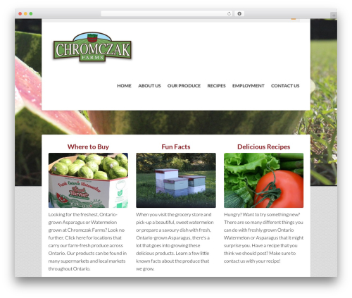 WordPress template Hedge - chromczakfarms.ca