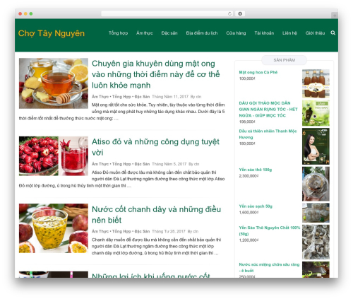 WordPress theme Hana - chotaynguyen.com