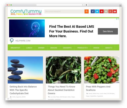 SociallyViral by MyThemeShop WordPress shopping theme - comfytummy.com