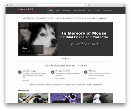 WordPress template Sensation Responsive WordPress Theme - chrislmart.com