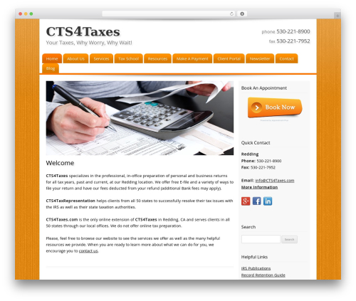 WP template Customized - cts4taxes.com