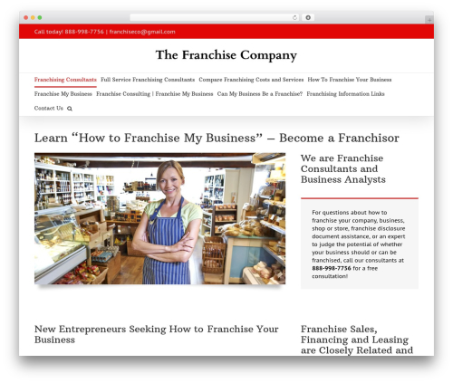 Avada WordPress template for business - franchising-consultants.com