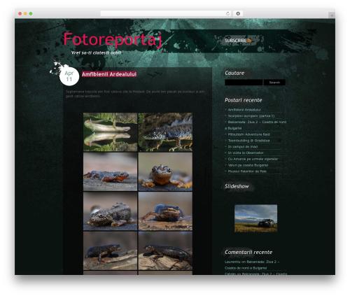 Best WordPress template Urban View - fotoreportaj.ro