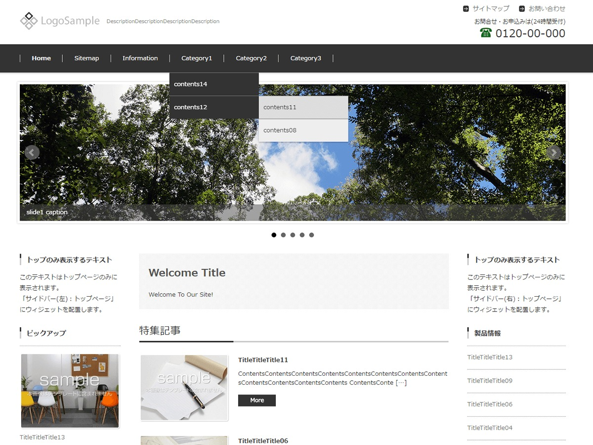FSV BASIC CORPORATE BLACK WordPress template for business