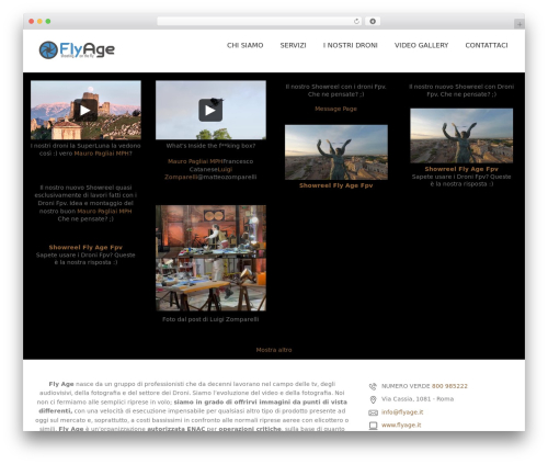 WordPress custom-facebook-feed-pro plugin - flyage.it