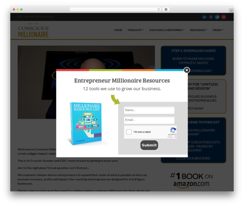 Delicate WP template - consciousmillionaire.com
