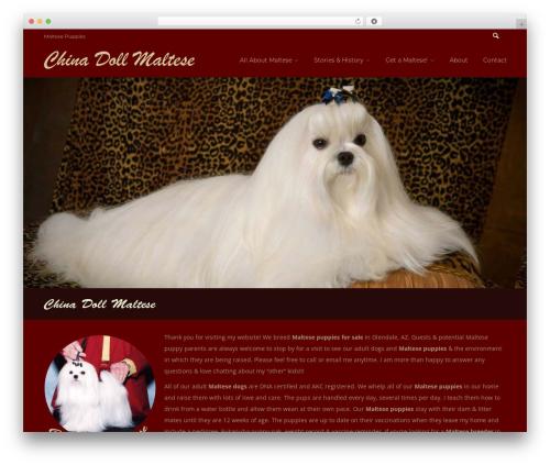 Everything WordPress theme - chinadollmaltese.com
