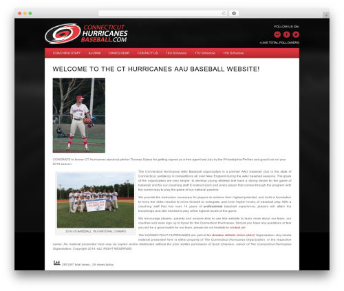 Minimal Xpert WordPress theme - cthurricanesbaseball.com