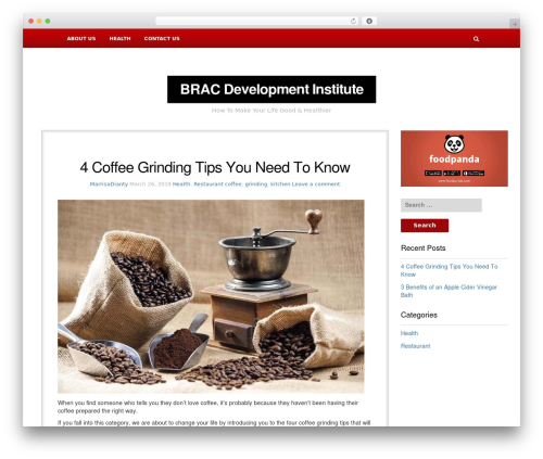 NewsBlog WordPress magazine theme - bracdevelopmentinstitute.org