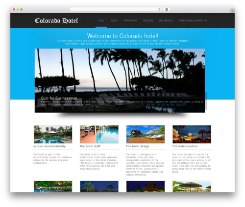 Simplicity Lite theme free download - coloradobusinessincubation.org