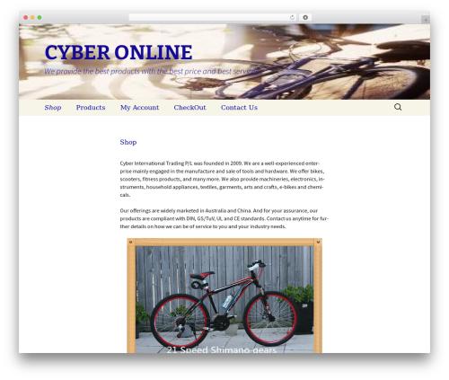 Twenty Thirteen template WordPress free - cyberonline.com.au