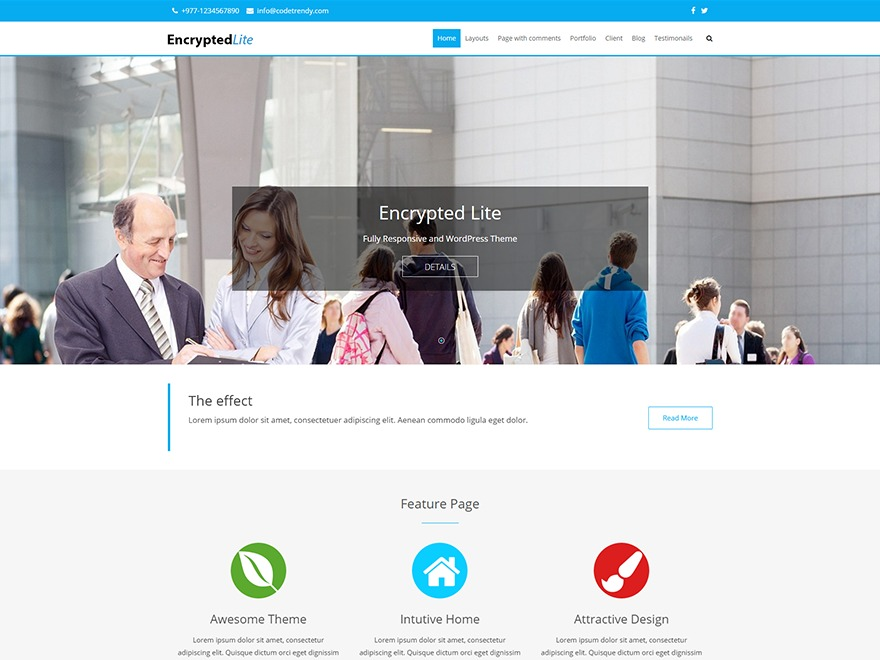 Encrypted Lite WordPress theme free download