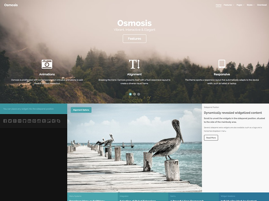 Osmosis WordPress website template