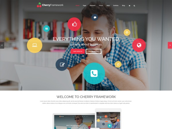 theme54803 WordPress theme