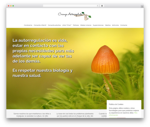 Bento template WordPress free - crianzaautorregulada.com