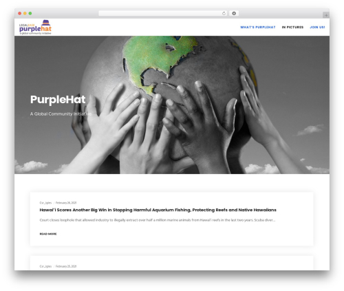 Movedo WordPress theme - csr.legaleasesolutions.com