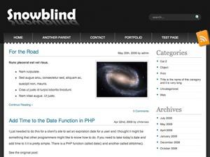 Template WordPress Snowblind