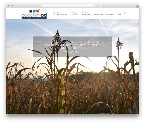 Divi WordPress template - coachin-od.com