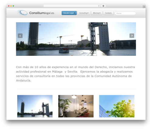 Business Pro 4 WordPress template for business - consiliumlegal.es