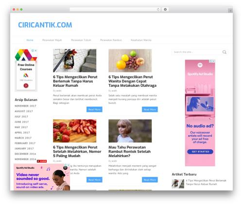 WordPress website template Split - ciricantik.com