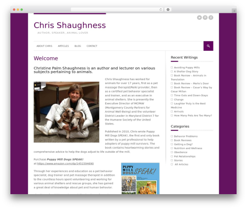 StyleMag WordPress theme - chrisshaughness.com