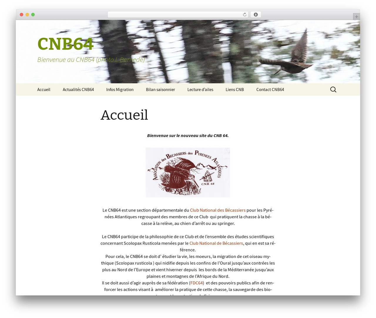 Twenty Thirteen WordPress theme - cnb64.fr