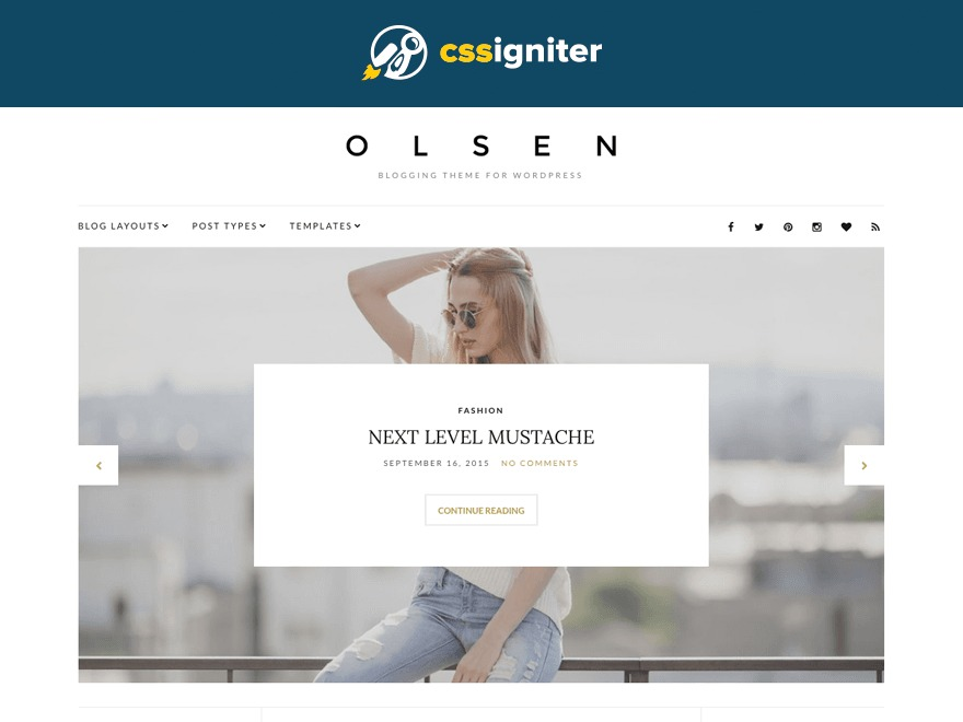 WordPress website template Olsen Child Theme