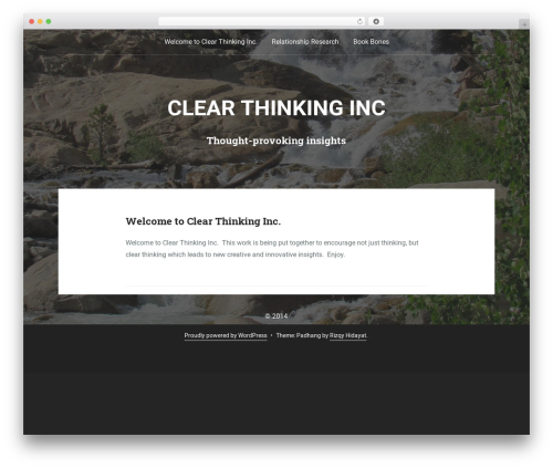 WP theme Padhang - clearthinkinginc.com