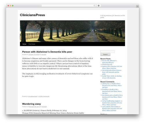 Twenty Ten free WP theme - clinicianspress.com