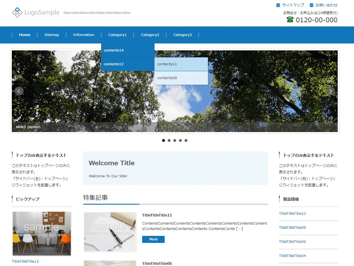 FSV BASIC CORPORATE BLUE company WordPress theme