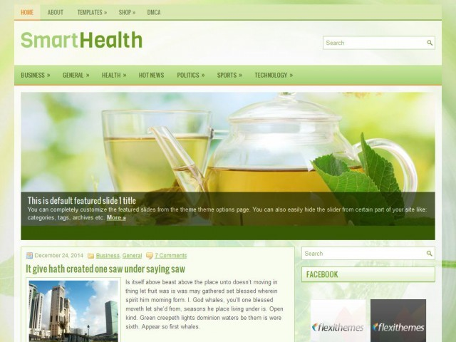 SmartHealth WordPress blog template