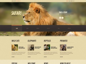 theme44843 WP template