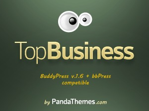 TopBusiness WordPress template for business
