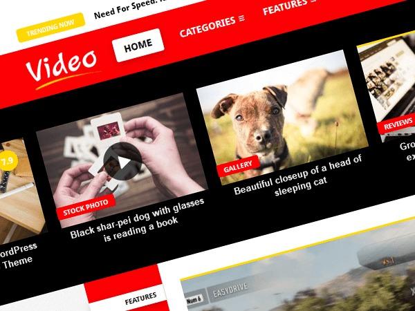 Video WP WordPress portfolio theme