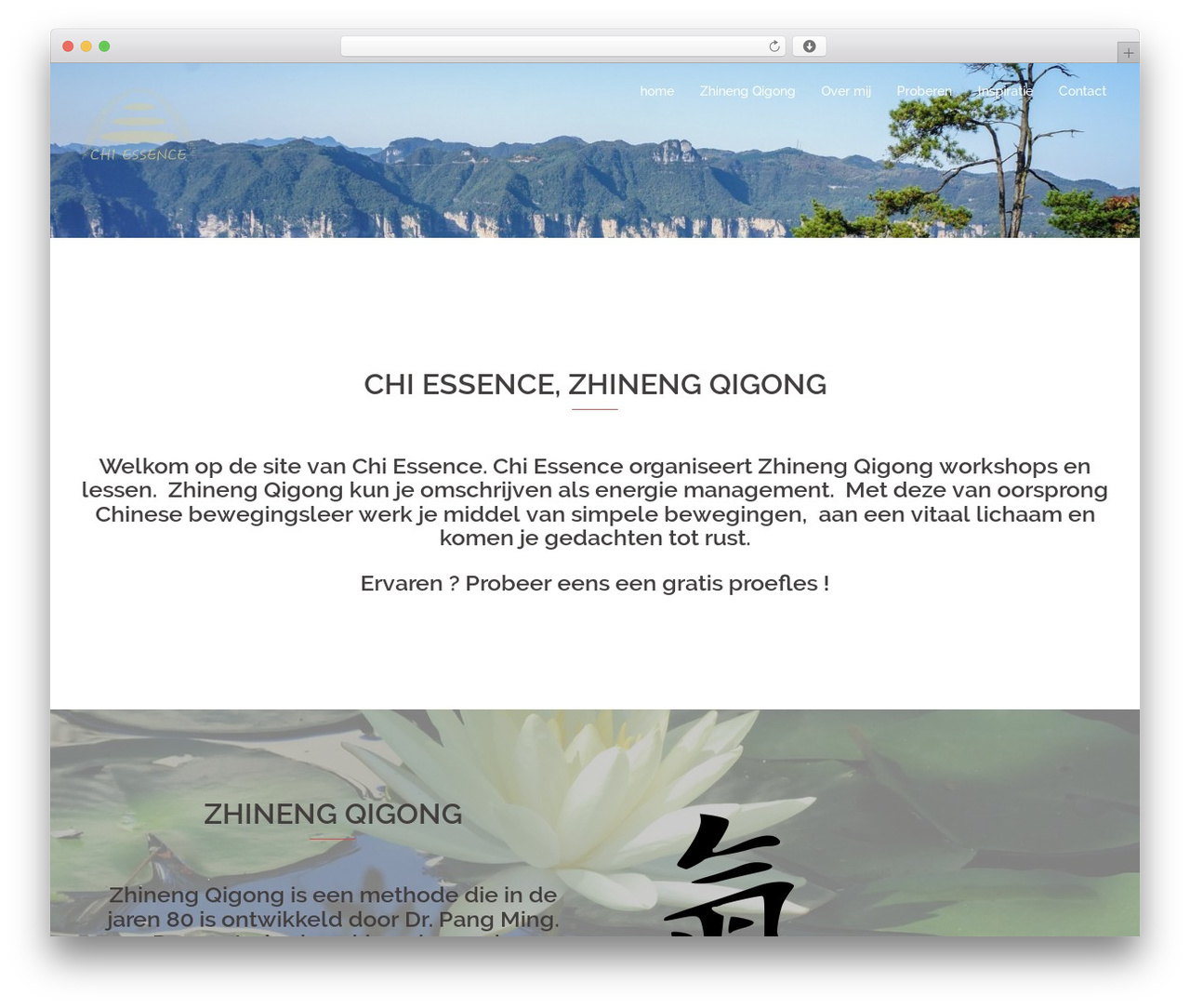 Sydney free WordPress theme - chi-essence.nl