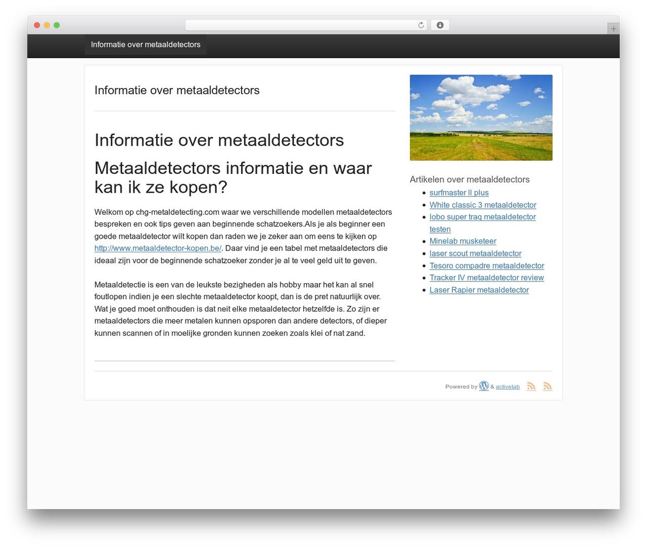 activetab free WordPress theme - chg-metaldetecting.com