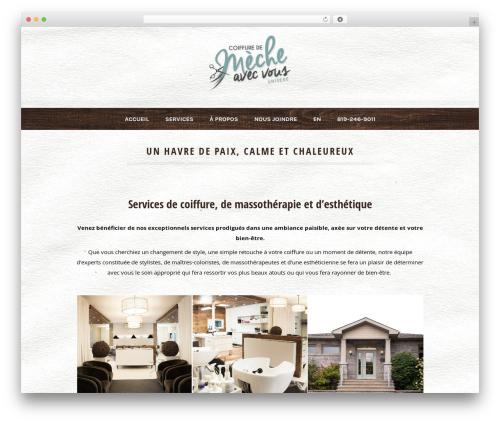 Dream Spa template WordPress - coiffuredemeche.com