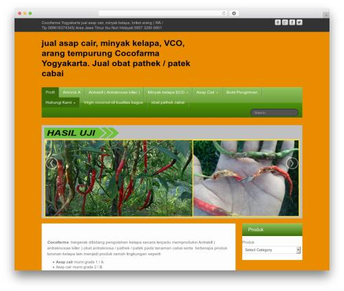 iFeature best free WordPress theme - cocofarma.com