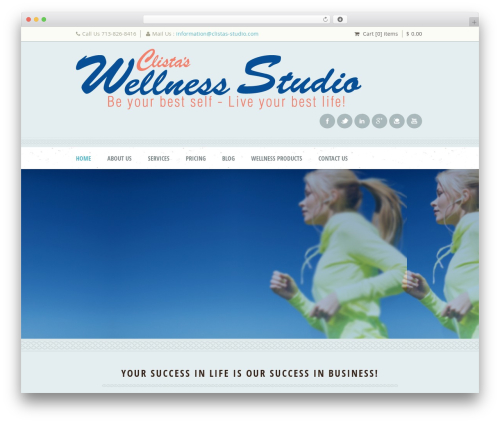 Theme WordPress Dream Spa - clistas-studio.com