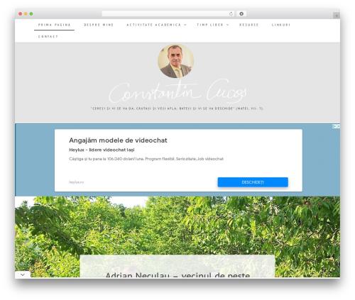 Best WordPress template Berry - constantincucos.ro