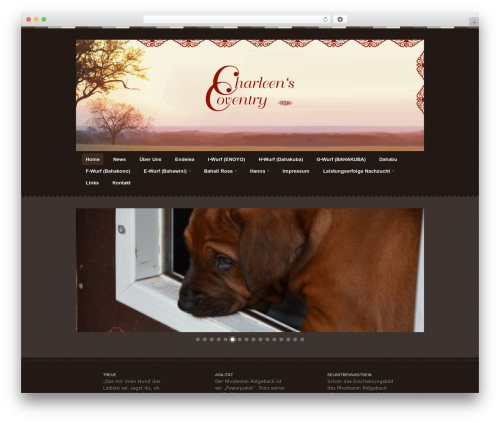 Swatch WordPress template - charleens-coventry.com