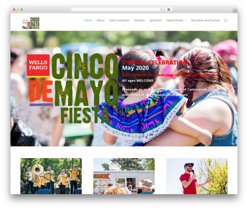 Divi best WordPress theme - cincofiesta.com