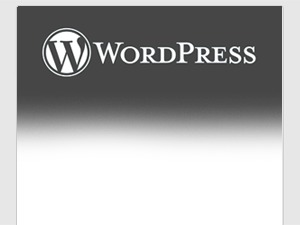 WordPress wptheme1 best WordPress template