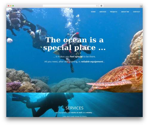 Free WordPress OneTone Companion plugin - cyltest.com.au